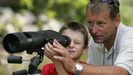 best spotting scopes for birding