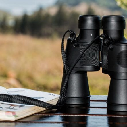 birdwatching equipment
