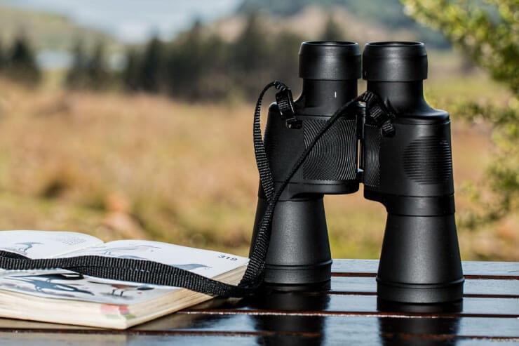 birdwatching equipment