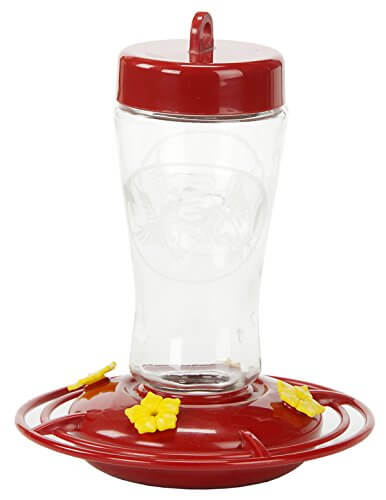 Homestead Etched Glass Hummingbird Feeder