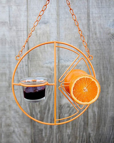 Heath Outdoor Products Clementine Oriole Feeder