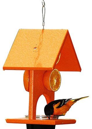 Songbird Essentials Fruit and Jelly Oriole Feeder