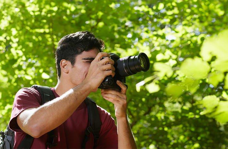 Man photographing birds