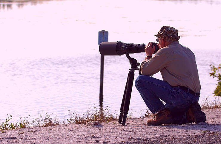 Necessary equipment for photographing birds