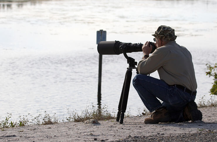 Best tripods for birds and wildlife photography